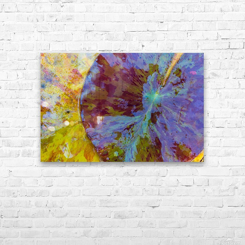 Colors Of Nature ap 2038 HD Sublimation Metal print with Decorating Float Frame (BOX)
