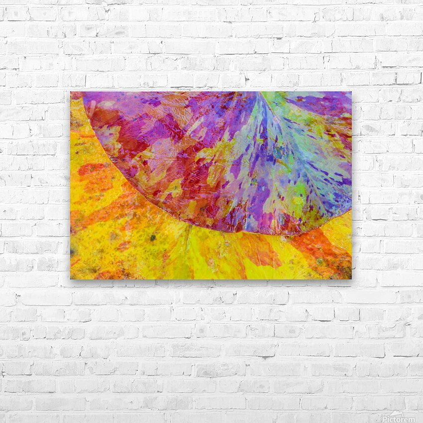 Colors Of Nature ap 2037 HD Sublimation Metal print with Decorating Float Frame (BOX)