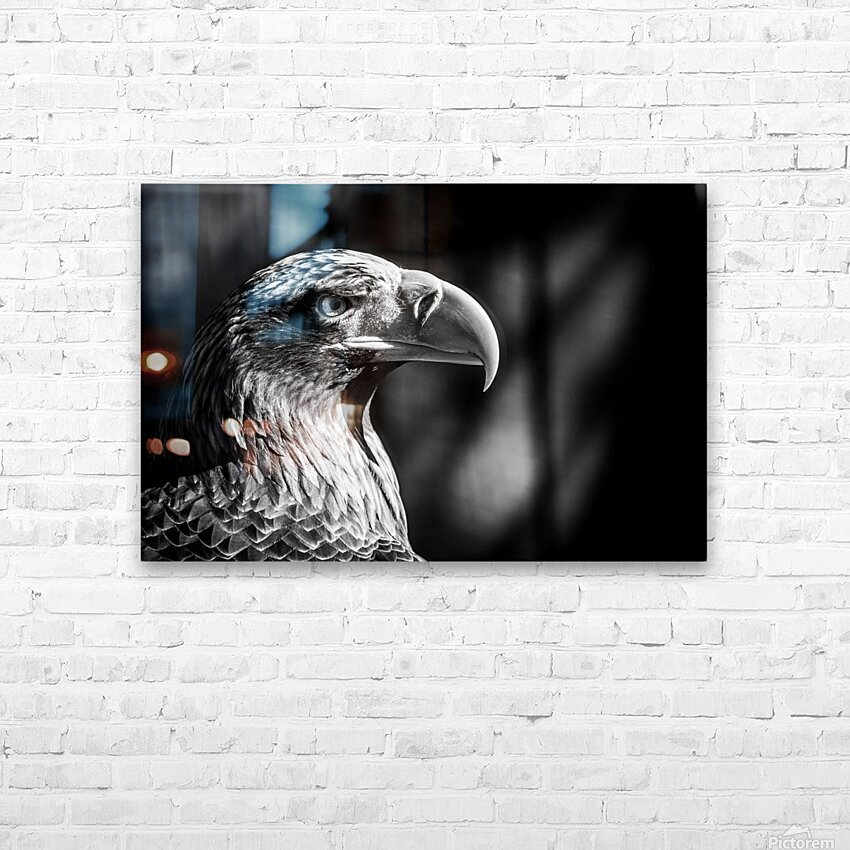 Eagle ap 2046 B&W HD Sublimation Metal print with Decorating Float Frame (BOX)