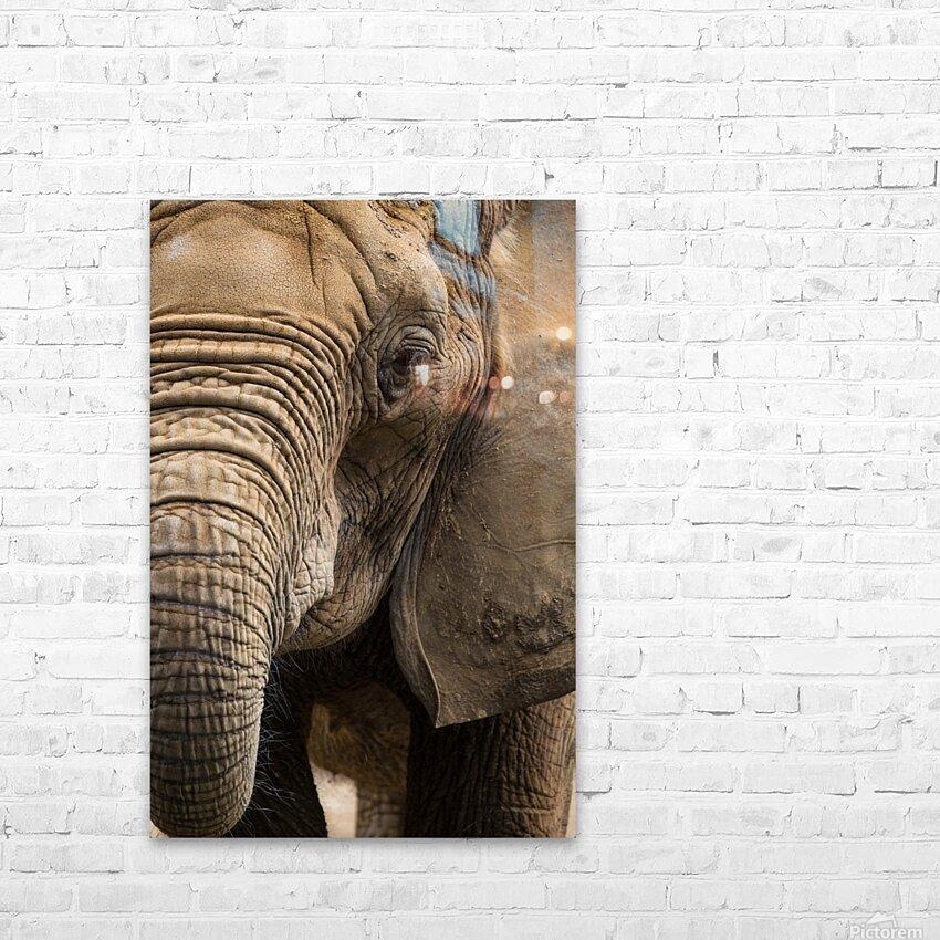 Portrait ap 2910 HD Sublimation Metal print with Decorating Float Frame (BOX)
