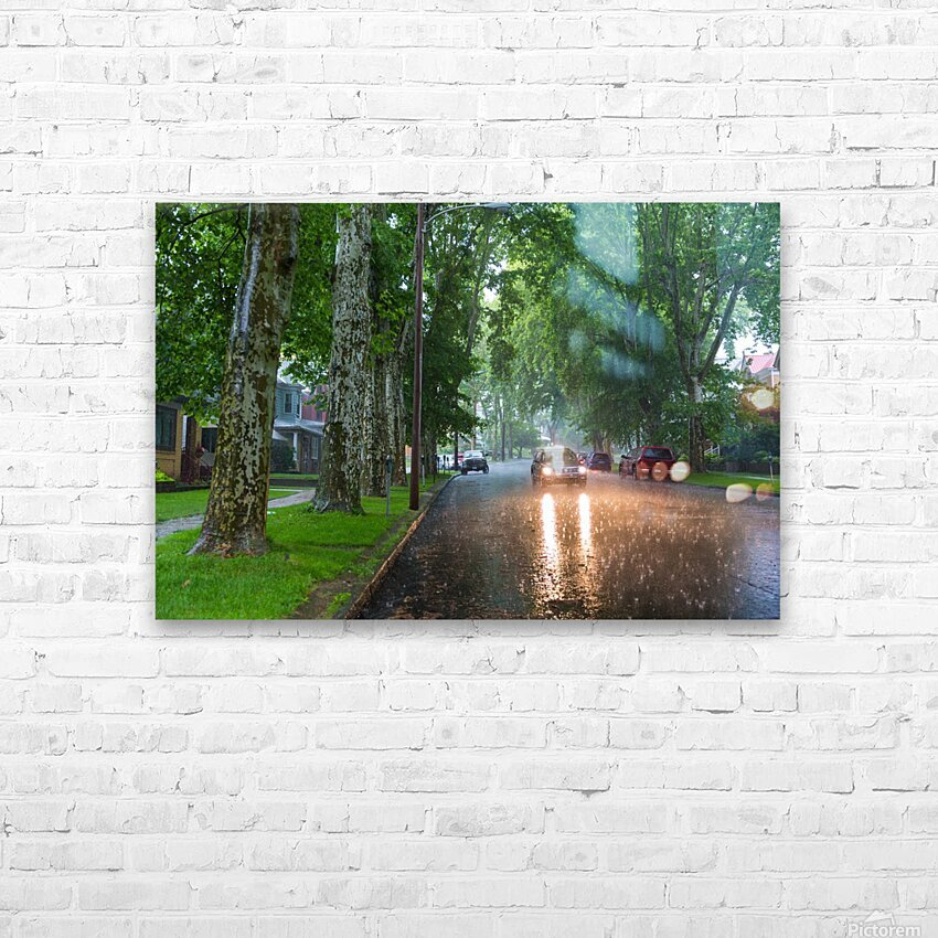 Summer Rain ap 2892 HD Sublimation Metal print with Decorating Float Frame (BOX)