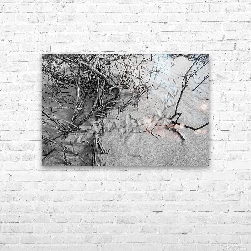 Bird Tracks ap 1605 B&W HD Sublimation Metal print with Decorating Float Frame (BOX)