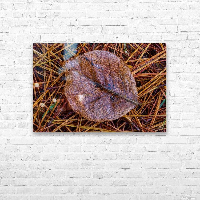 Leaf ap 1838 HD Sublimation Metal print with Decorating Float Frame (BOX)