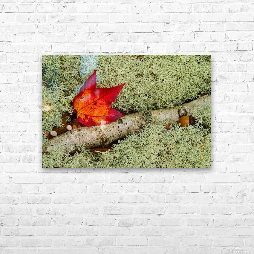 Maple Leaf ap 1555 HD Sublimation Metal print with Decorating Float Frame (BOX)