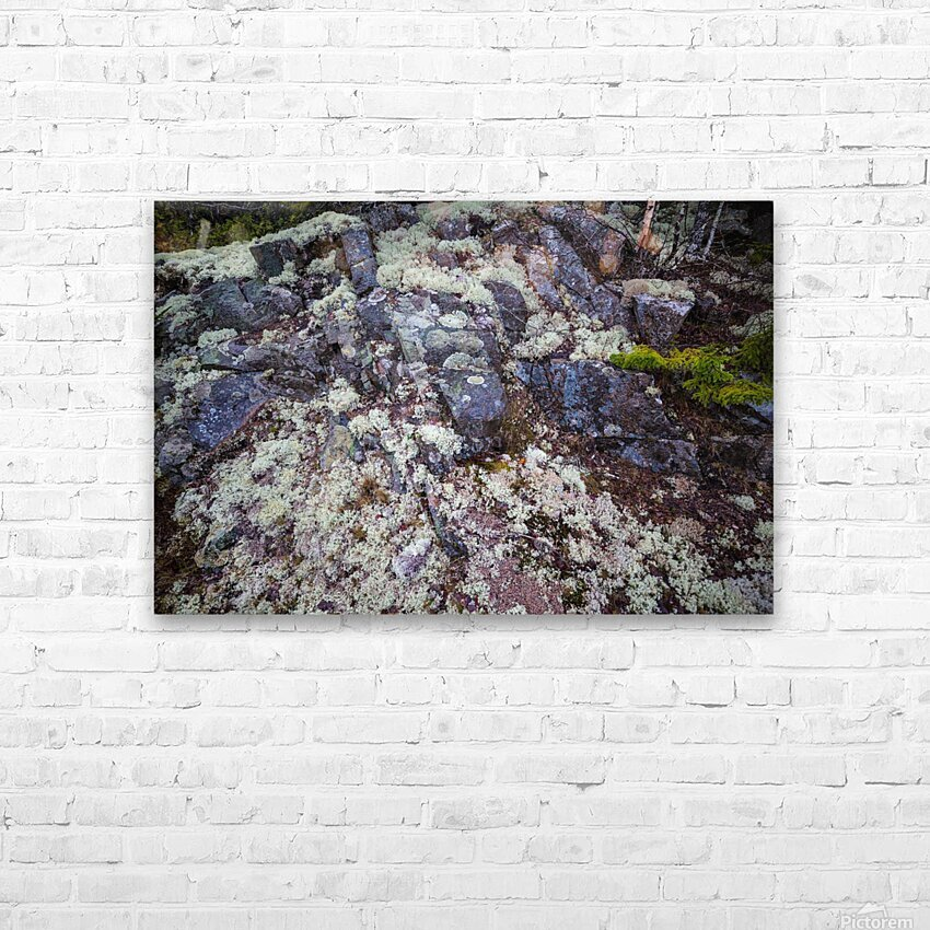 Purple Rocks ap 2289 HD Sublimation Metal print with Decorating Float Frame (BOX)