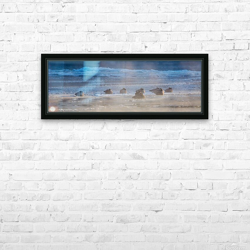 Canada Geese ap 1993 HD Sublimation Metal print with Decorating Float Frame (BOX)