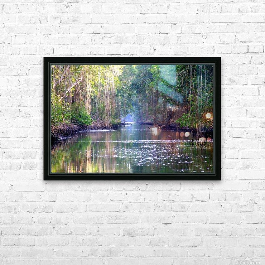 Caroni Swamp   Trinidad HD Sublimation Metal print with Decorating Float Frame (BOX)