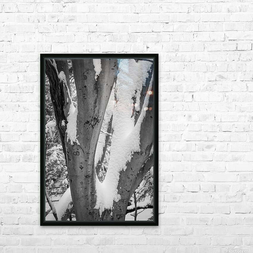 Beech ap 2044 B&W HD Sublimation Metal print with Decorating Float Frame (BOX)