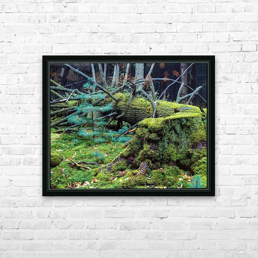 Fallen Giant ap 1513 HD Sublimation Metal print with Decorating Float Frame (BOX)