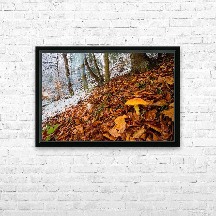 Mushroom ap 1576 HD Sublimation Metal print with Decorating Float Frame (BOX)