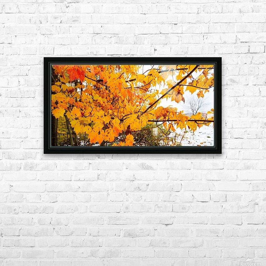 Maple Leaves ap 1589 HD Sublimation Metal print with Decorating Float Frame (BOX)