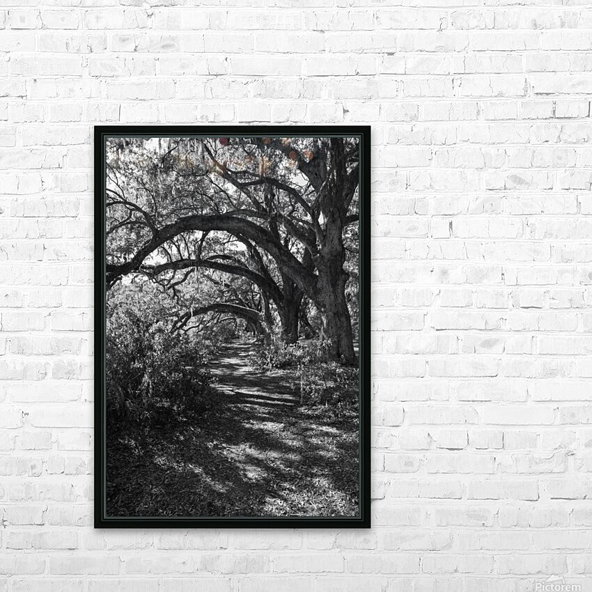 Nature Trail ap 2081 B&W HD Sublimation Metal print with Decorating Float Frame (BOX)