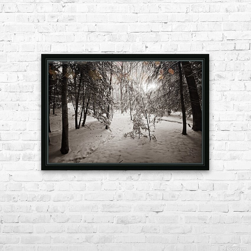 Sunlight ap 2731 B&W HD Sublimation Metal print with Decorating Float Frame (BOX)