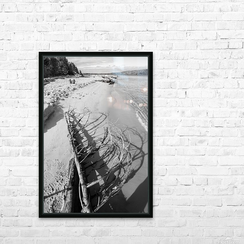 Driftwood ap 2482 B&W HD Sublimation Metal print with Decorating Float Frame (BOX)