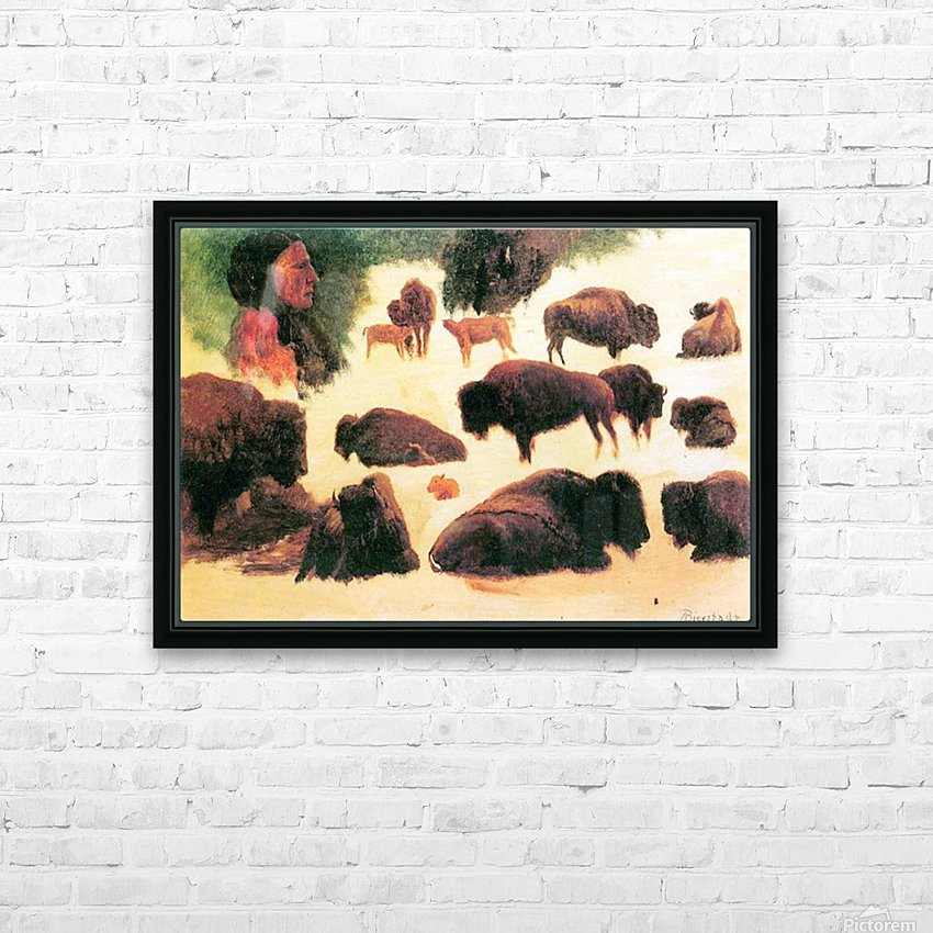 Study of Buffaloes by Bierstadt HD Sublimation Metal print with Decorating Float Frame (BOX)