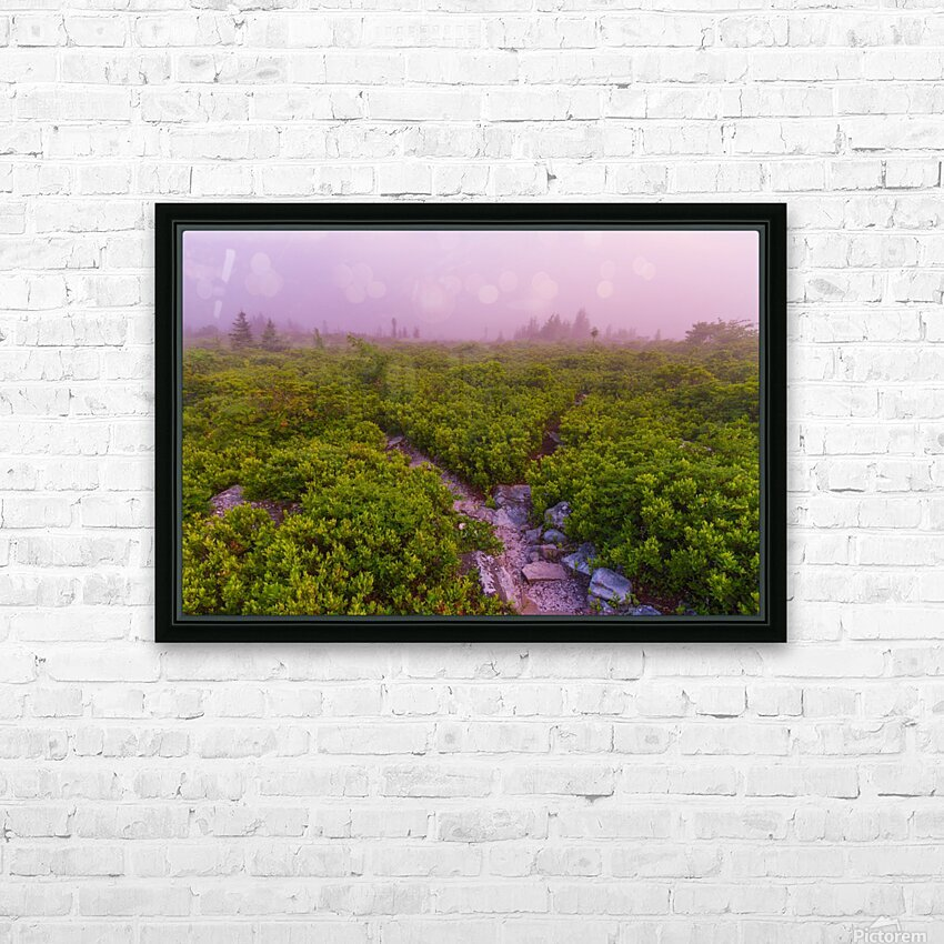 Blueberries ap 1900 HD Sublimation Metal print with Decorating Float Frame (BOX)