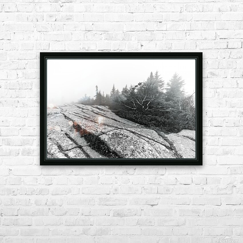Lichen and Granite ap 2340 B&W HD Sublimation Metal print with Decorating Float Frame (BOX)