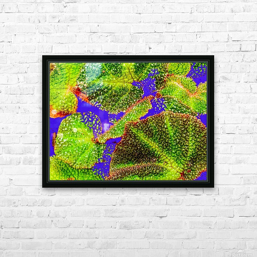 Tropical Colours HD Sublimation Metal print with Decorating Float Frame (BOX)