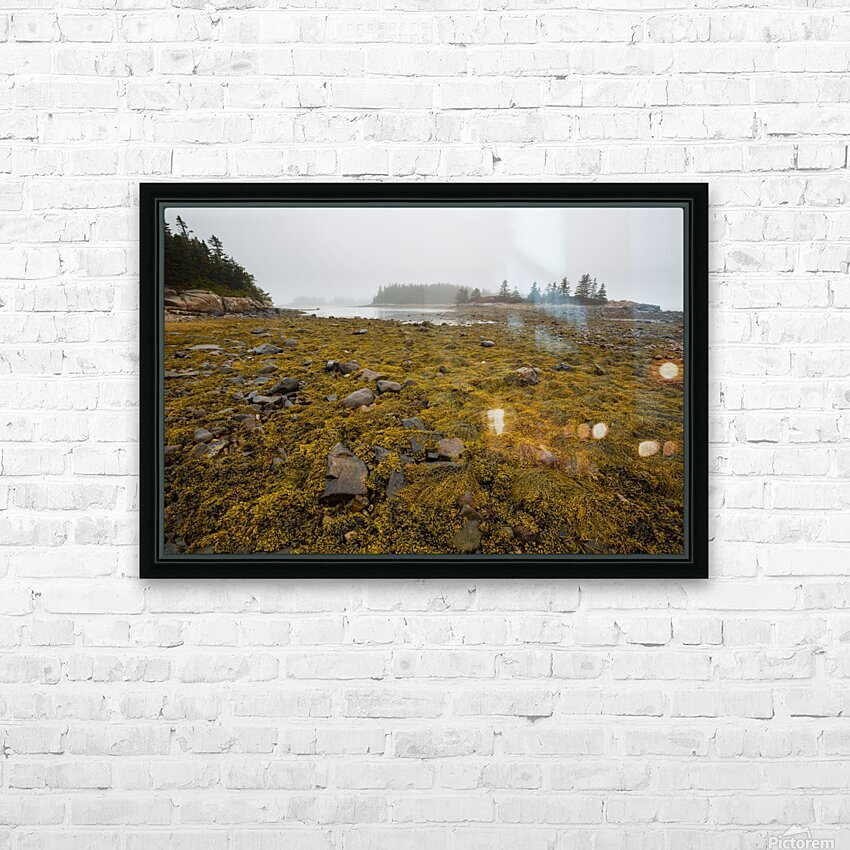 Low Tide ap 2271 HD Sublimation Metal print with Decorating Float Frame (BOX)