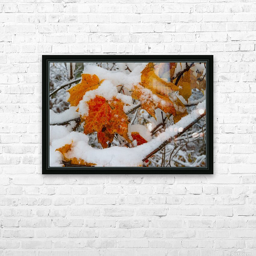 Early Snow ap 1571 HD Sublimation Metal print with Decorating Float Frame (BOX)