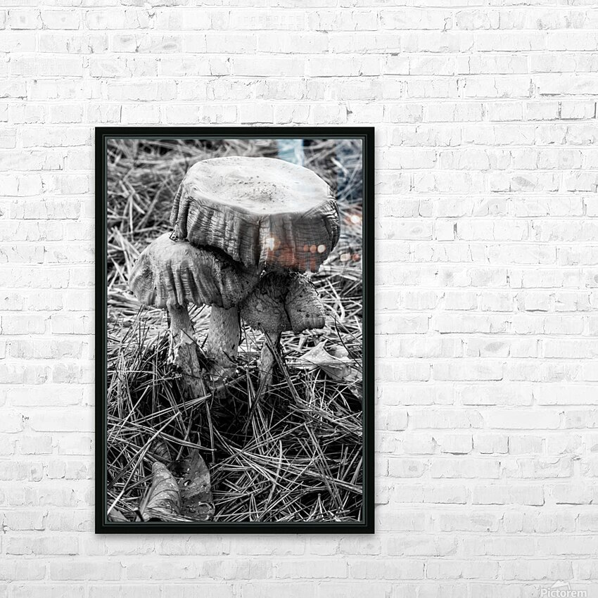 Mushrooms ap 1558 B&W HD Sublimation Metal print with Decorating Float Frame (BOX)