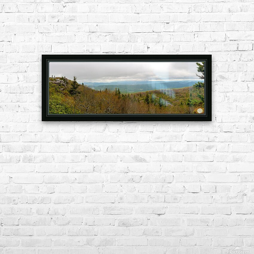 Bear Rocks apmi 1656 HD Sublimation Metal print with Decorating Float Frame (BOX)