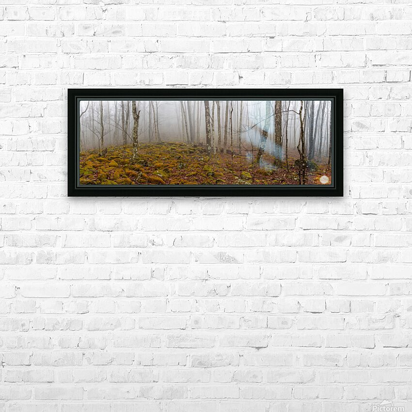 Mystic Forest apmi 1620 HD Sublimation Metal print with Decorating Float Frame (BOX)