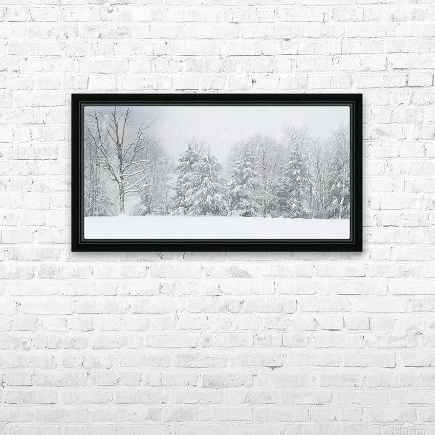 Treeline apmi 1569 HD Sublimation Metal print with Decorating Float Frame (BOX)