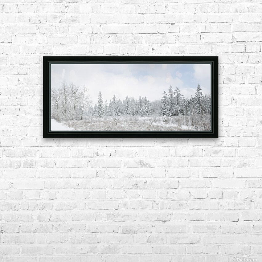 Treeline apmi 1588 HD Sublimation Metal print with Decorating Float Frame (BOX)