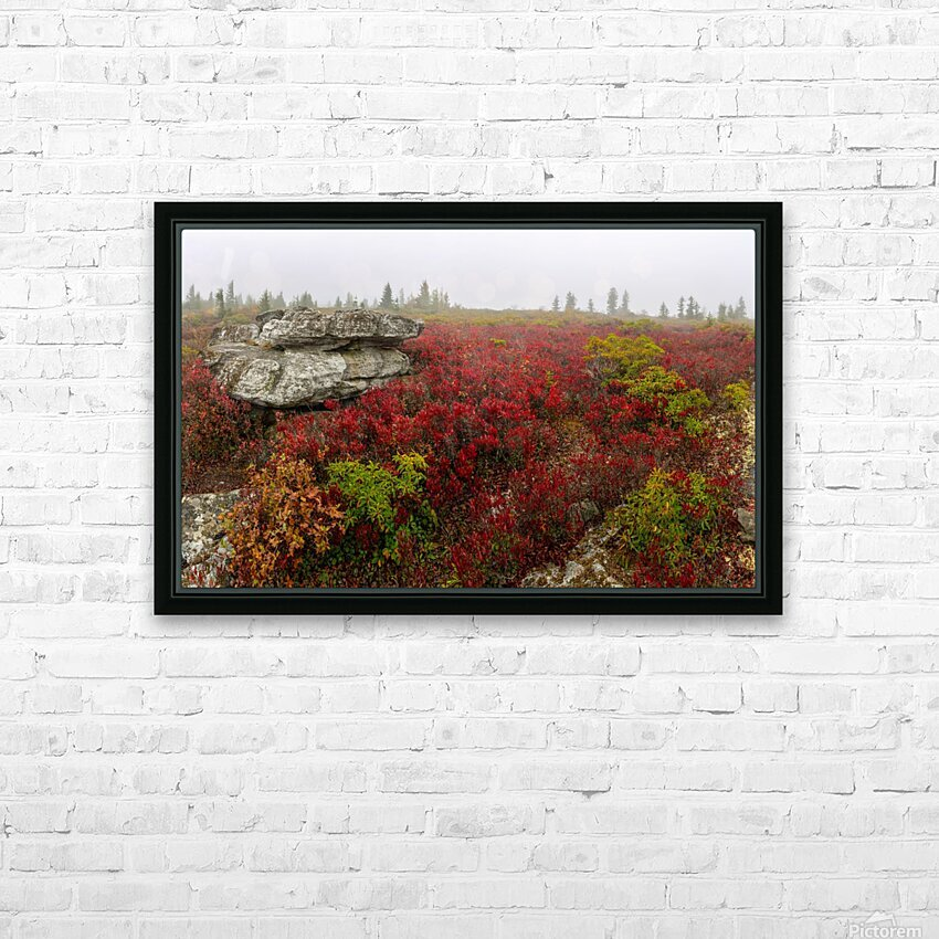 Alpine Tundra apmi 1812 HD Sublimation Metal print with Decorating Float Frame (BOX)
