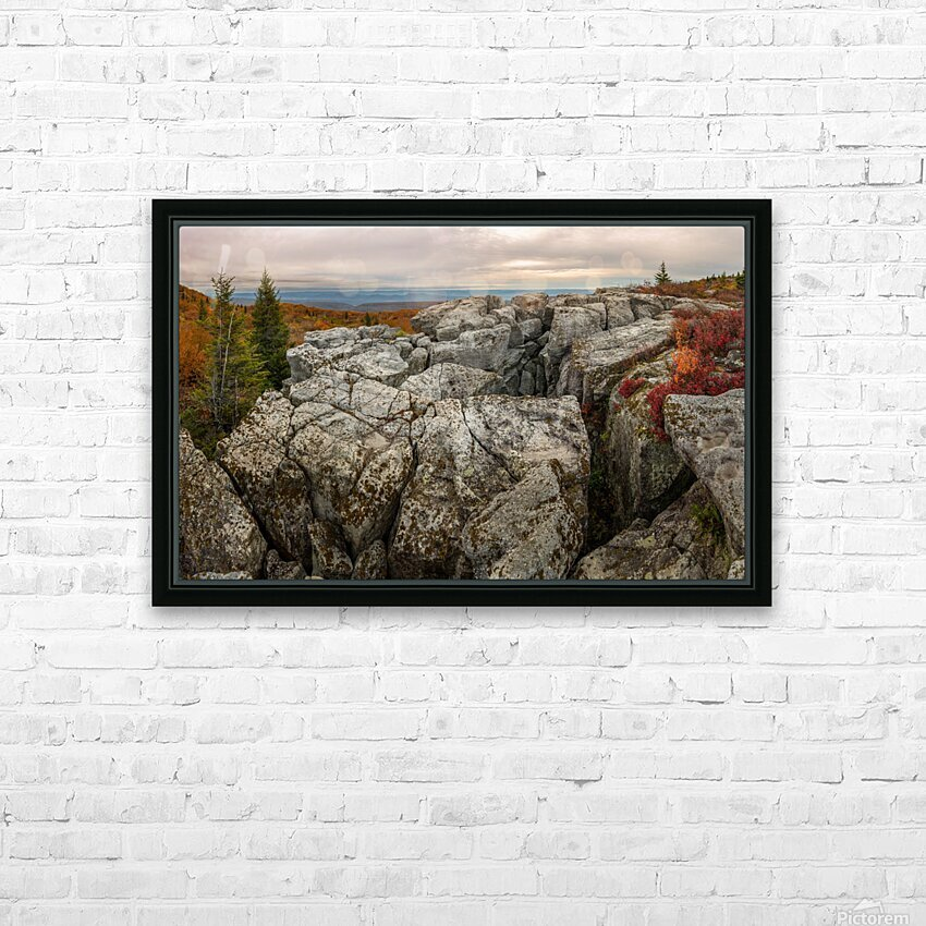 Bear Rocks Preserve apmi 1791 HD Sublimation Metal print with Decorating Float Frame (BOX)