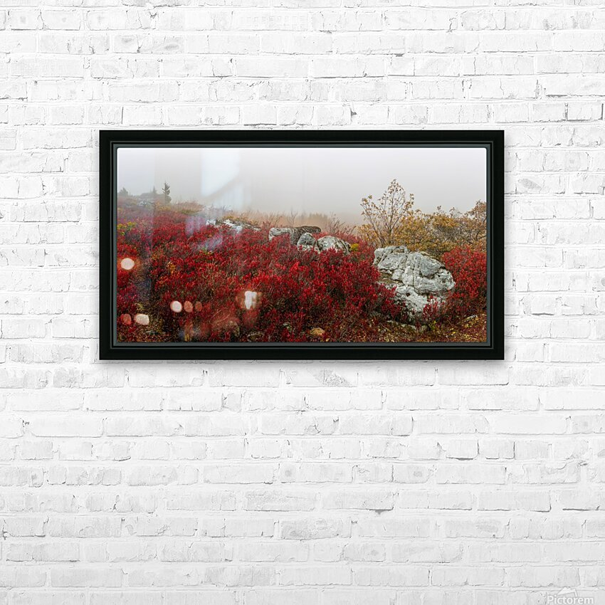 Blueberries and Boulders apmi 1808 HD Sublimation Metal print with Decorating Float Frame (BOX)