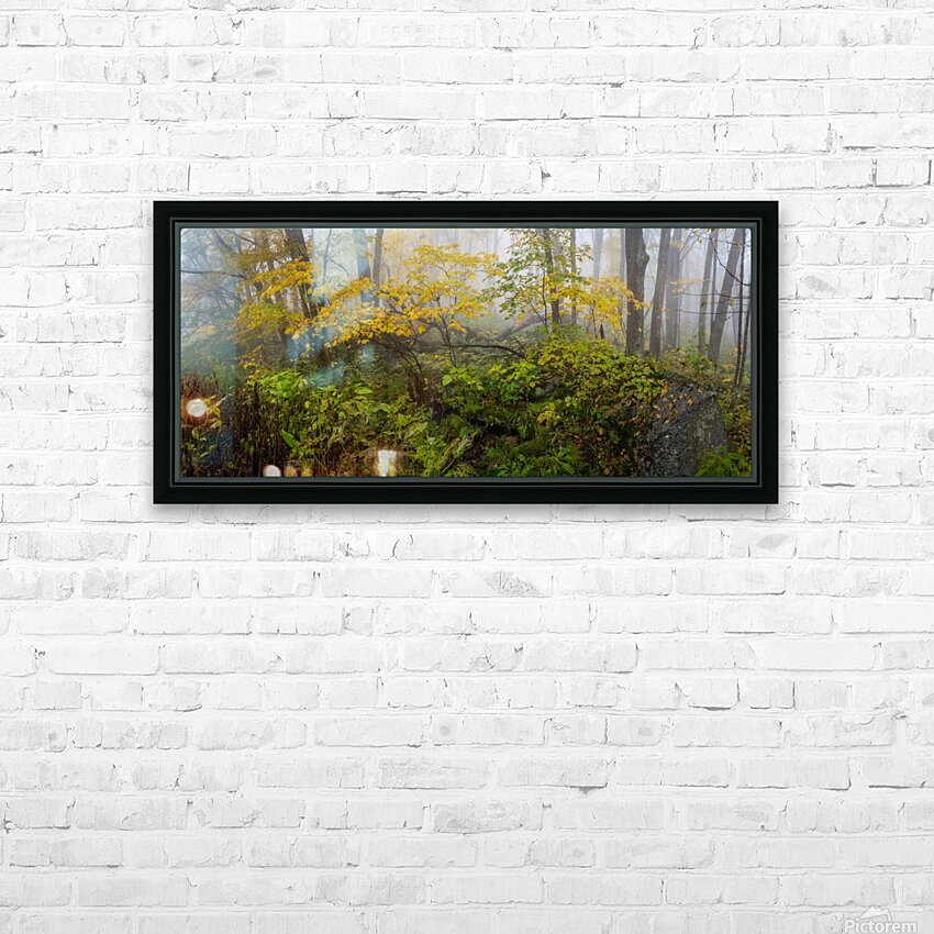 Fall Color apmi 1865 HD Sublimation Metal print with Decorating Float Frame (BOX)