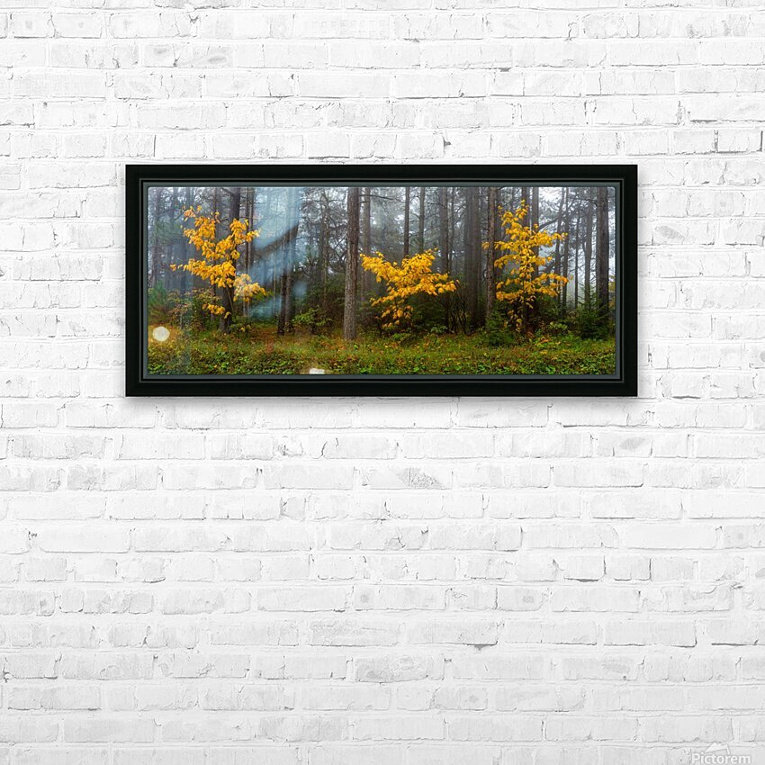 Touch of Color apmi 1849 HD Sublimation Metal print with Decorating Float Frame (BOX)