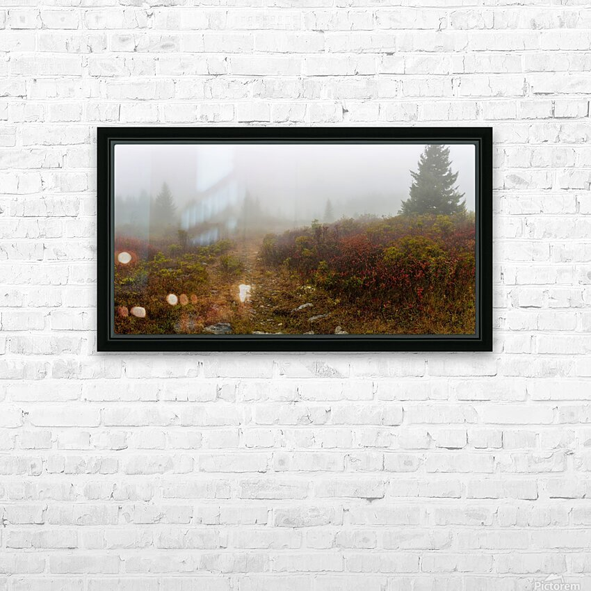 Trail Entrance apmi 1840 HD Sublimation Metal print with Decorating Float Frame (BOX)