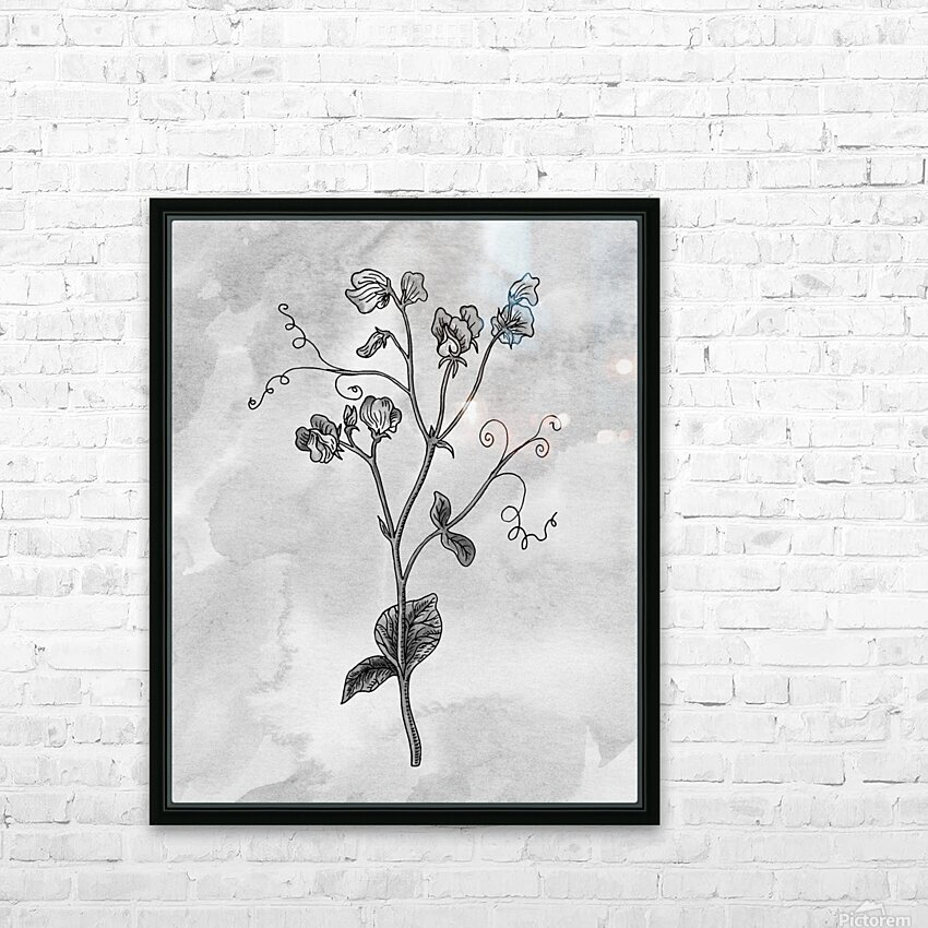 Sweet Pea Simple Gray Botanical Flower On Watercolor Marble  HD Sublimation Metal print with Decorating Float Frame (BOX)