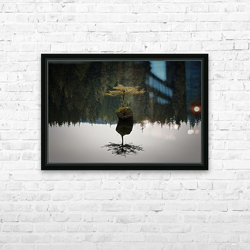 Reflection on a Bonsai Tree HD Sublimation Metal print with Decorating Float Frame (BOX)