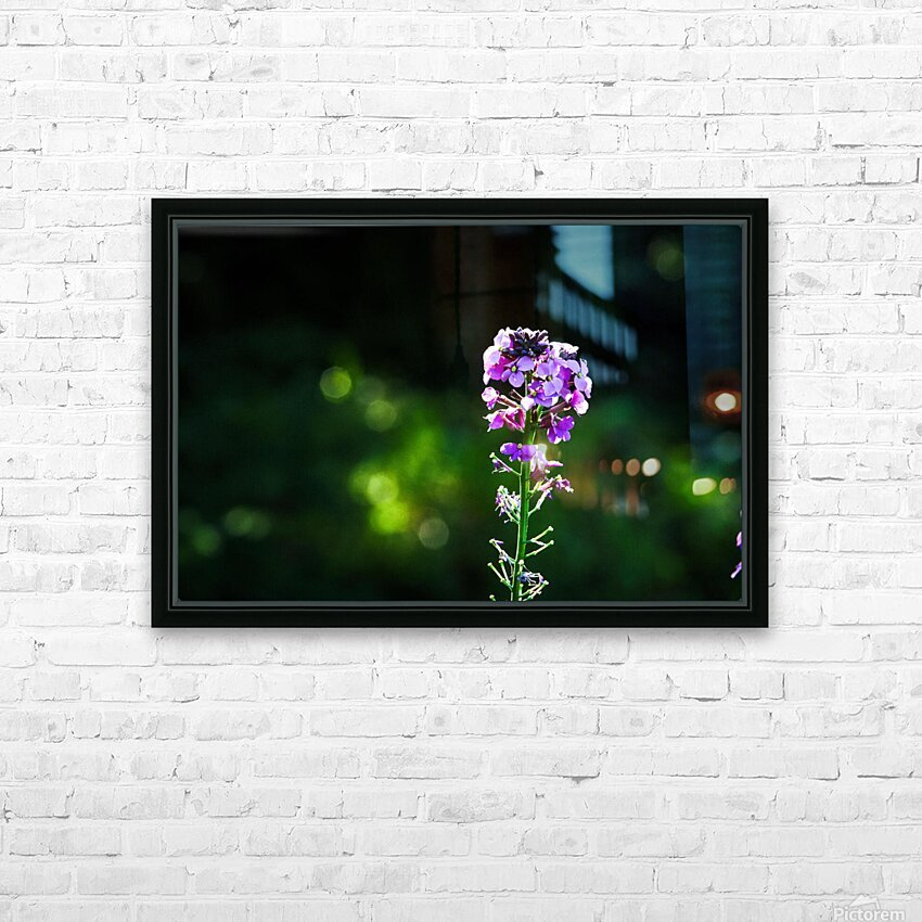 Royal Flower HD Sublimation Metal print with Decorating Float Frame (BOX)