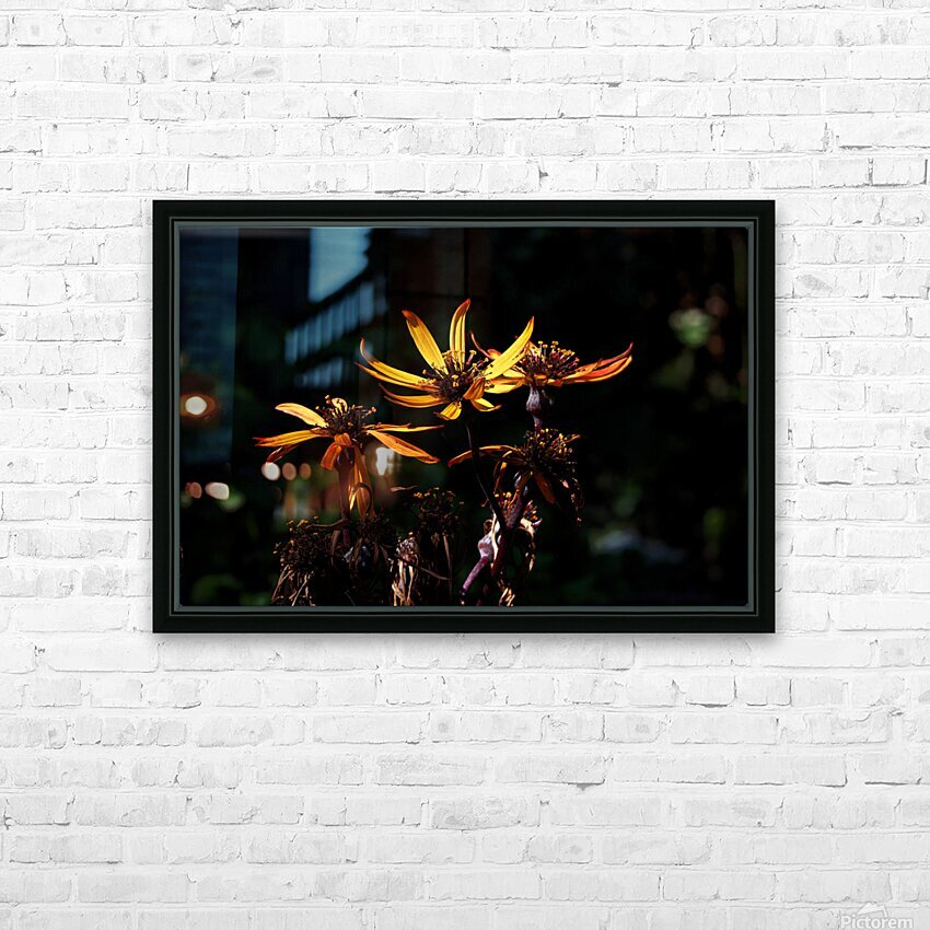Fire Flower HD Sublimation Metal print with Decorating Float Frame (BOX)