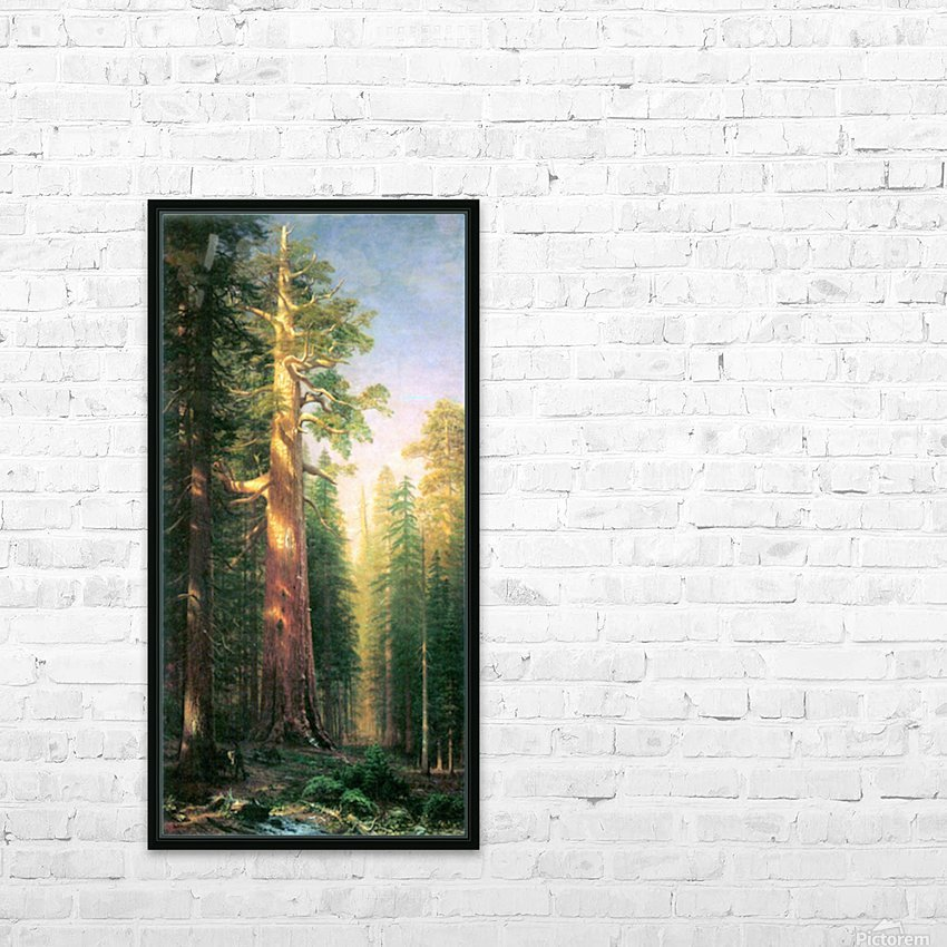 The big trees, Mariposa Grove, California by Bierstadt HD Sublimation Metal print with Decorating Float Frame (BOX)