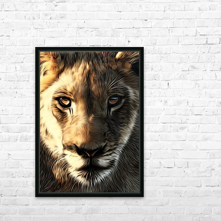 Lions Head HD Sublimation Metal print with Decorating Float Frame (BOX)