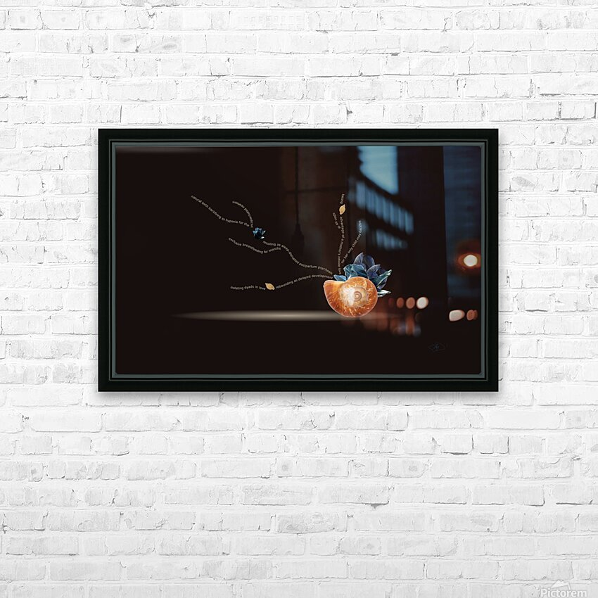 Sacrifice HD Sublimation Metal print with Decorating Float Frame (BOX)
