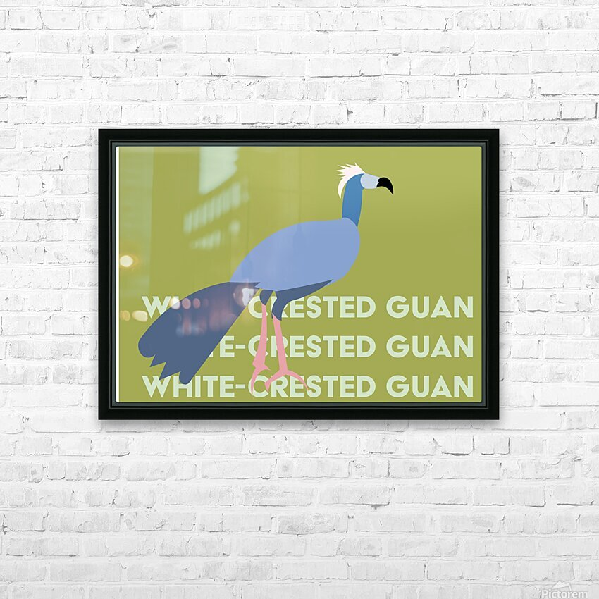 White-Crested Guan HD Sublimation Metal print with Decorating Float Frame (BOX)