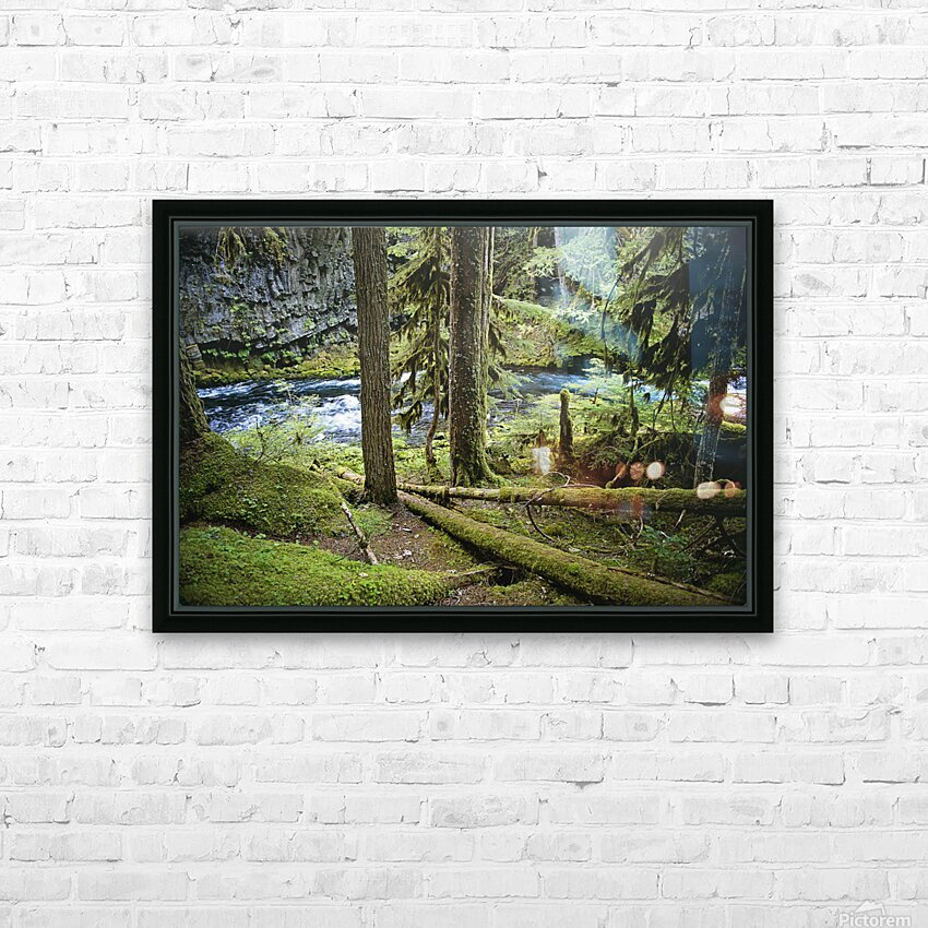 The Mckenzie River HD Sublimation Metal print with Decorating Float Frame (BOX)
