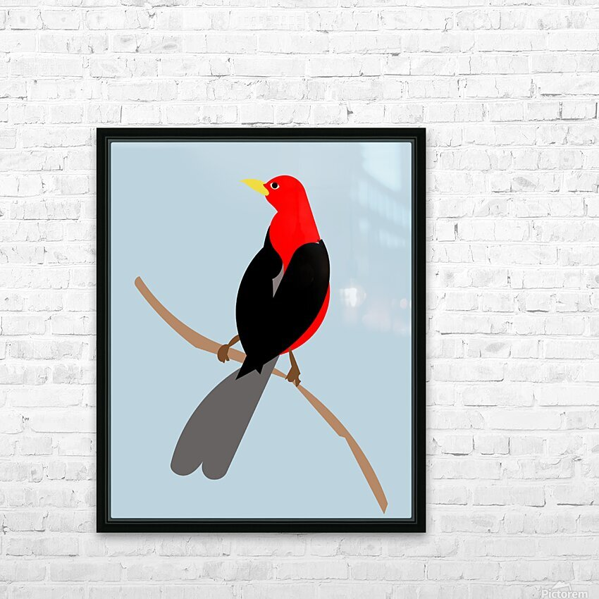 Scarlet TANAGER HD Sublimation Metal print with Decorating Float Frame (BOX)