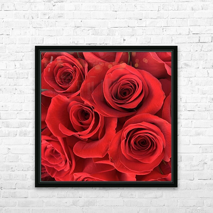 Eternal Roses HD Sublimation Metal print with Decorating Float Frame (BOX)