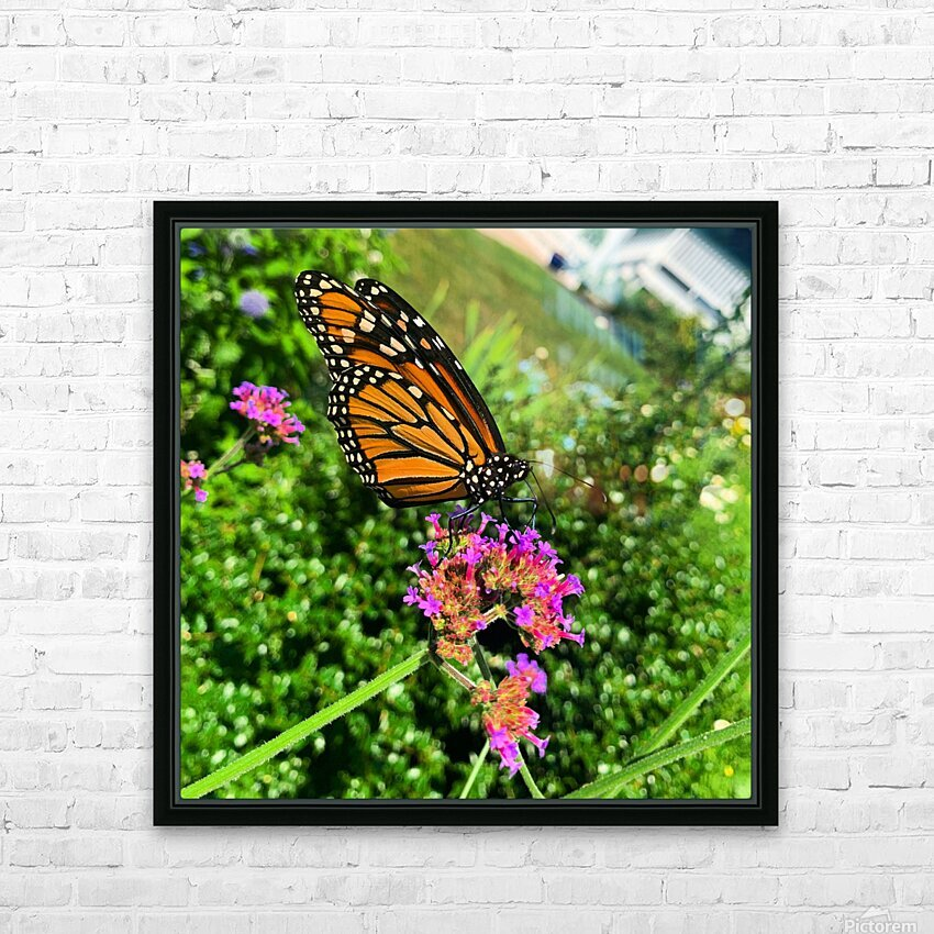 Butterfly Bliss  HD Sublimation Metal print with Decorating Float Frame (BOX)