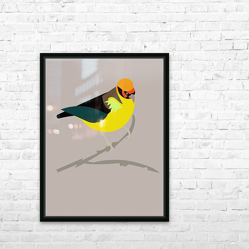 Black Eared Tanager HD Sublimation Metal print with Decorating Float Frame (BOX)