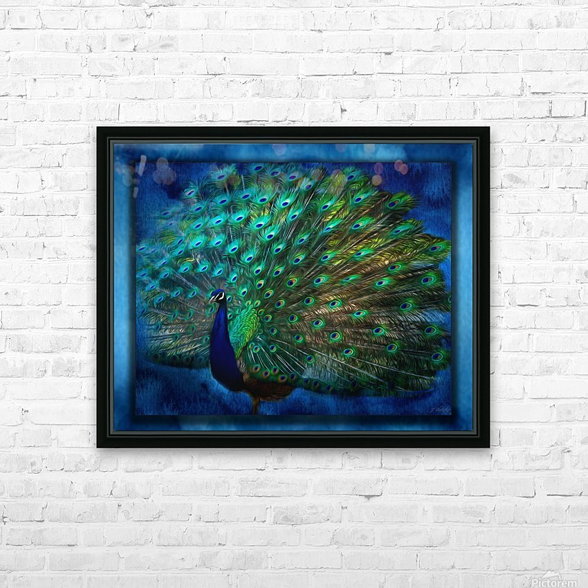 Being Yourself - Peacock Art by Jordan Blackstone HD Sublimation Metal print with Decorating Float Frame (BOX)