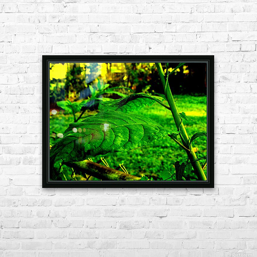 sofn EE42975E HD Sublimation Metal print with Decorating Float Frame (BOX)